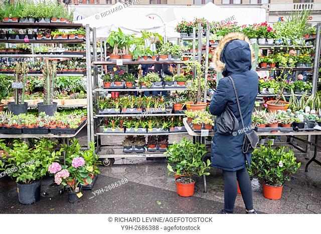 Shoppers buy plants at the Union Square Greenmarket in New York