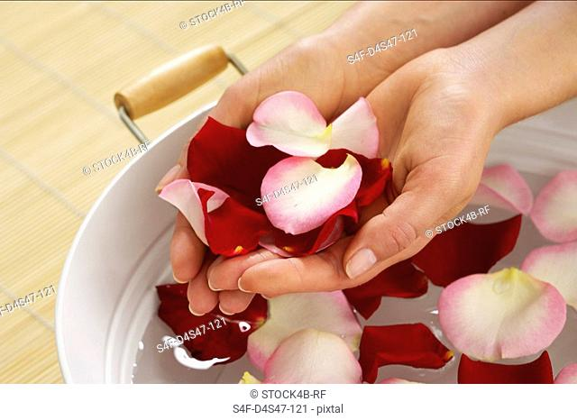 Woman holding rose petals in palms of hands