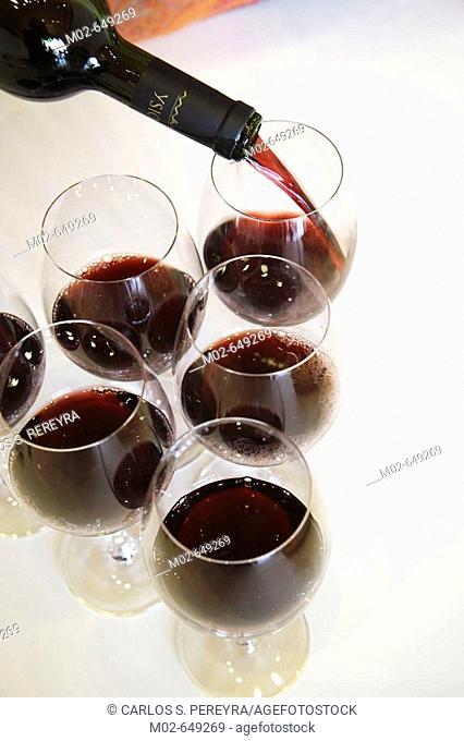 Red wine. La Rioja, Spain