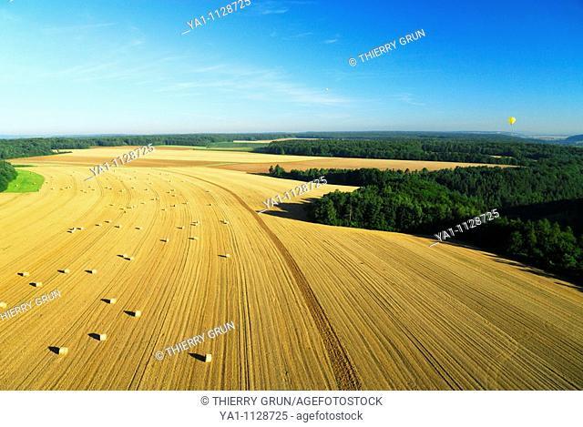 Aerial view of harvesting wheat field near Dommartin la Montagne. Meuse, Lorraine region, France