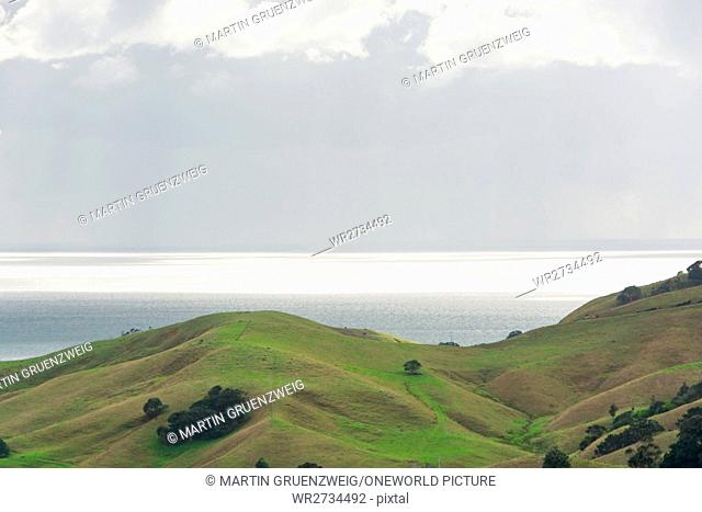 New Zealand, Waikato, Manaia, hilly landscape on the coast of New Zealand