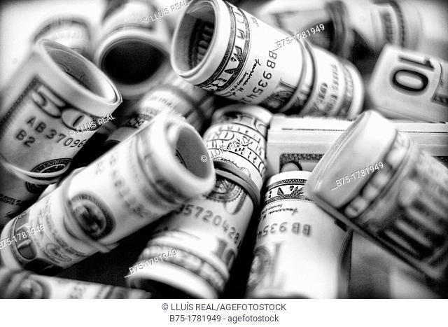 grupo de dolares enrollados, group of dollars rolled