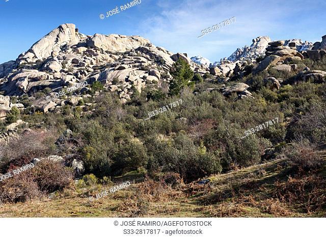 Pedriza Anterior Regional Park del Ato Manzanares. Manzanares el Real. Madrid. Spain. Europe
