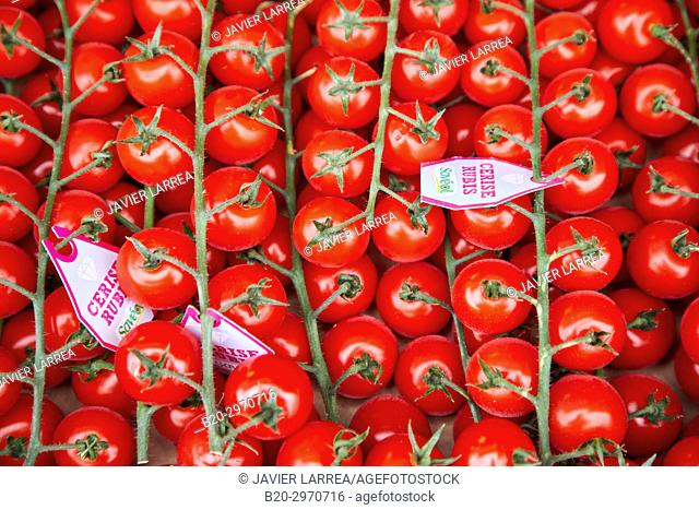 Cherry tomatoes, Les Halles, market building, Dijon, Cote d'Or, Burgundy Region, Bourgogne, France, Europe