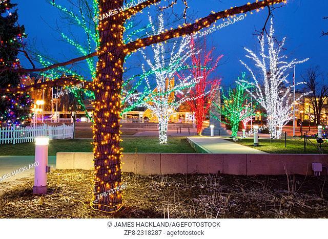 Illuminated trees near City Hall in downtown Brampton, Ontario, Canada