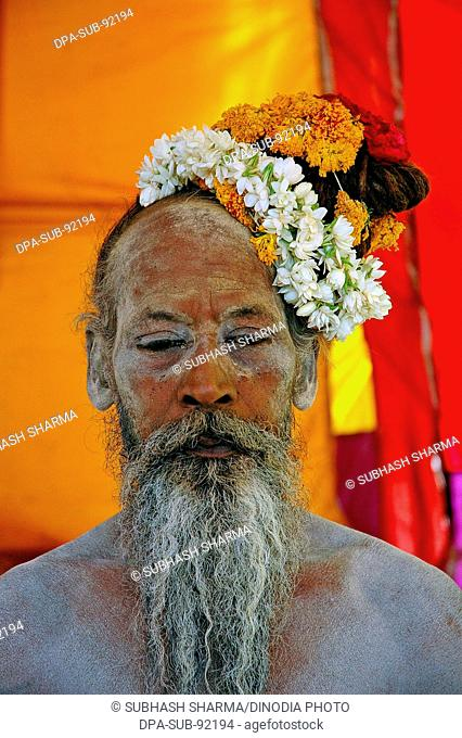 Indian old man priest sadhu with flower in hair and white grey beard , India