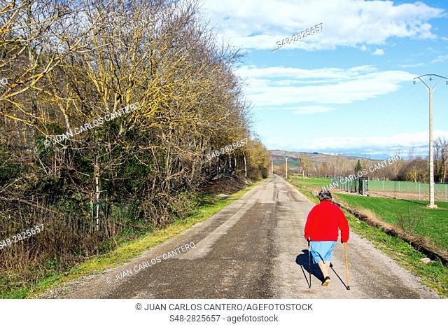 Entorno rural en Santurdejo. La Rioja. España. Europa