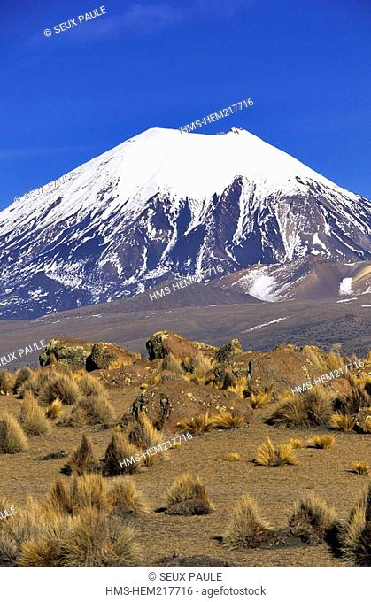 Bolivia, Oruro Department, Sajama Province, Sajama National Park, Nevados de Payachata complex of volcanoes