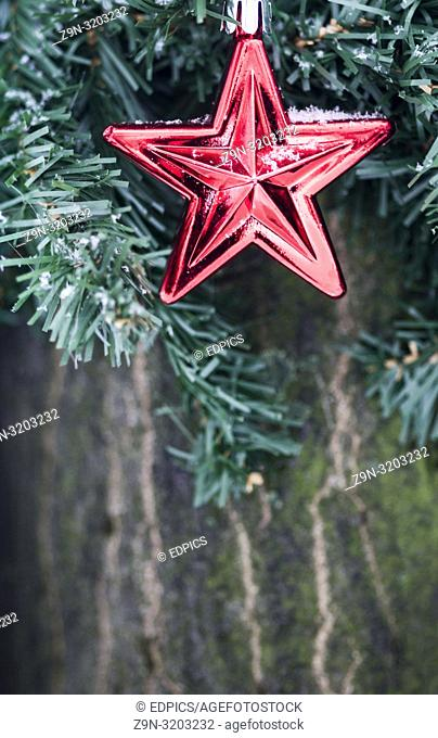 frugal christmas decoration in form of a red star attached to a tree in a park, fine snow flakes, stuttgart, baden-wuerttemberg, germany