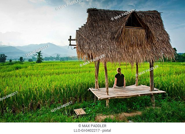Woman sitting under traditional bus stop looks out over rice paddy in Pai, Northern Thailand, Thailand