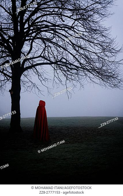 Cloacked figure in the foggy field