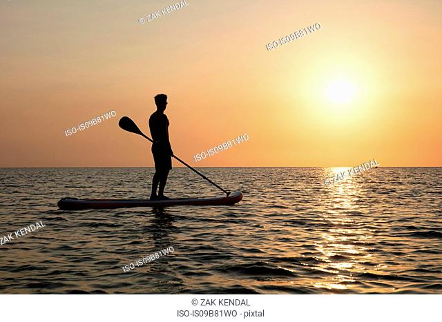Man on paddleboard at sunset, Kilindoni, Pwani, Tanzania, Africa