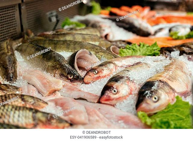 Close up of a raw fish in a showcase at the supermarket