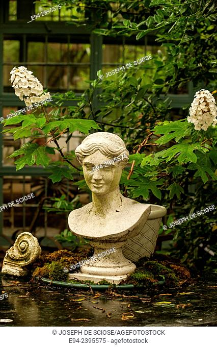 A bust statue on a table in a garden environment with hydrangeas in the background.Georgia USA