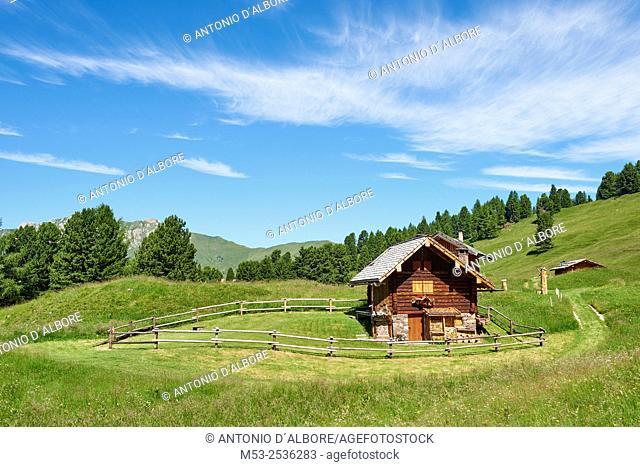 A wodden cottage in the Parco Naturale Paneveggio - Pale di San Martino. Paneveggio. Trento Province. Trentino-Alto Adige. Italy