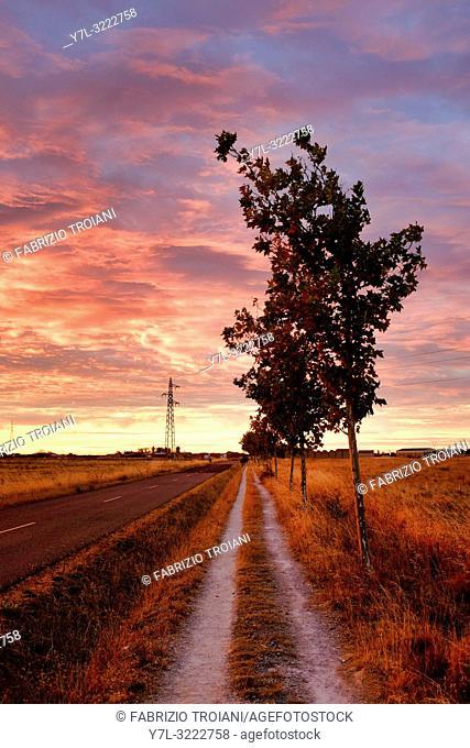 Sunrise on the pedestrian path on the Carretera Hacia Reliegos, El Burgo Ranero, Spain