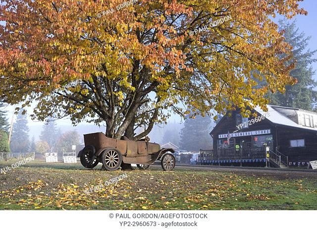 Ronald, Washington: Tree with autumn foliage grows through a vintage jalopy