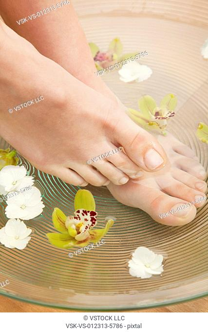 Close up of woman's feet in spa, Studio shot
