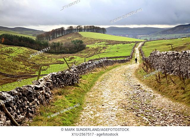 Lone Walker on Horton Scar Lane near Horton in Ribblesdale North Yorkshire England