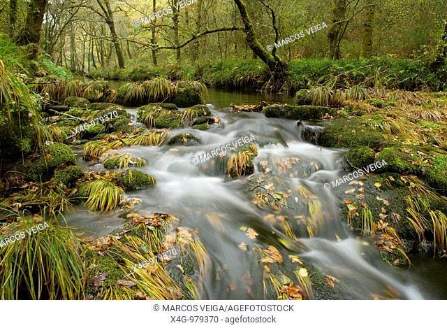 Paisaje otoñal en el río Barragán, Autumnal landscape of river Barragán, Pontevedra, Galicia, España