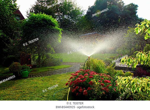 garden irrigation with lawn sprinkler, Germany, North Rhine-Westphalia