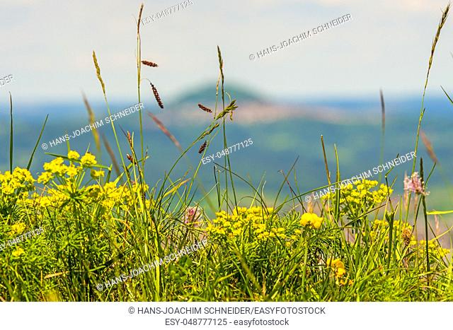 Panoramic view of the Celtic grave hill Burren to the famous hill Hohenstaufen in Germany