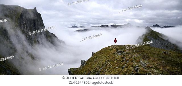 Norway, Troms County, north of the Arctic Circle, Senja island between Tromso and the Lofoten islands, trek to the summit of Husfjellet (635m)