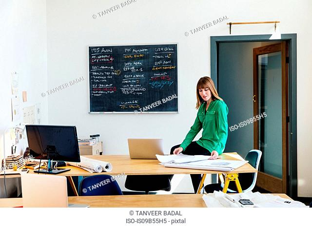 Woman sitting on desk in office looking at blueprints
