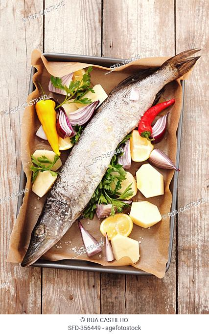 Hake with vegetables, lemons and parsley on a baking tray
