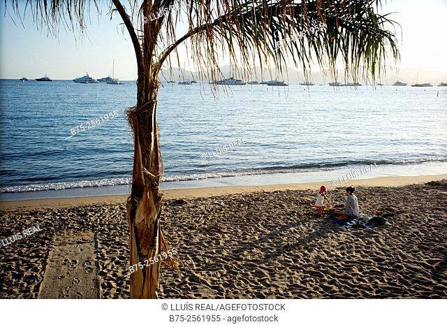Mother and child, sitting on the sand of the beach of Cannes and a palm in the foreground. French Riviera, Provence, France