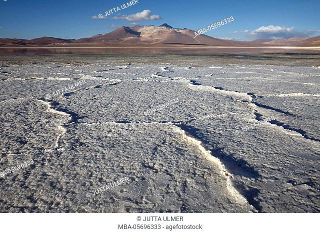 Chile, national park Nevado Tres Cruzes, Laguna del Negro Francisco, salt lake
