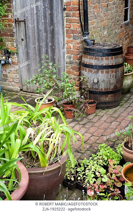 Large wooden rainwater barrel for recycling water from the roof with plant pots, Bexon Manor Kent England