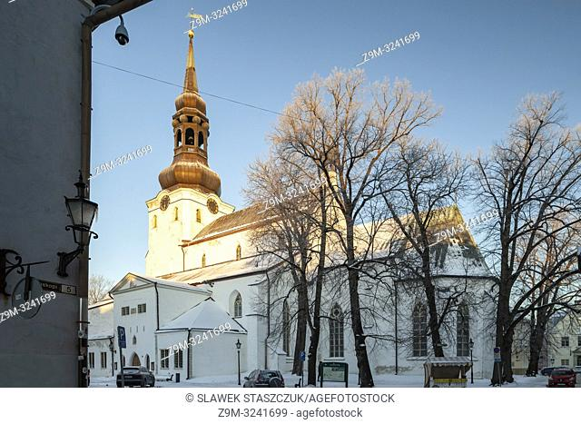 Winter morning at St Mary's cathedral in Tallinn old town, Estonia