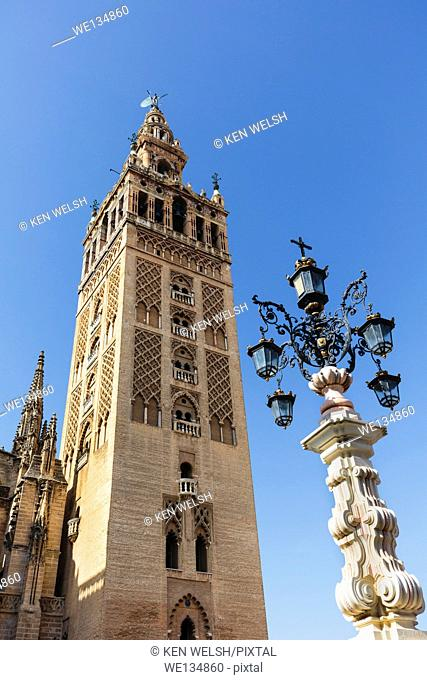 Seville, Seville Province, Andalusia, southern Spain. The Giralda tower seen from the Plaza de la Alianza