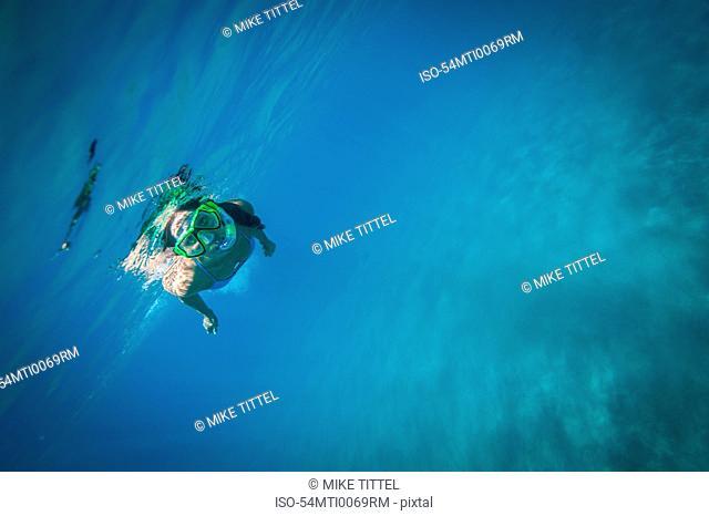 Snorkeler swimming underwater