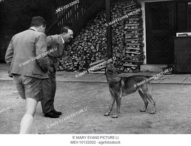 Adolf Hitler greets his German Shepherd dog, Blondi, at his mountain retreat, the Berghof, in the Obersalzberg mountains