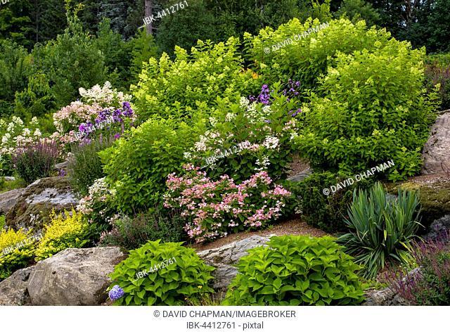 Rock Garden with different flowering plants, Quebec, Canada