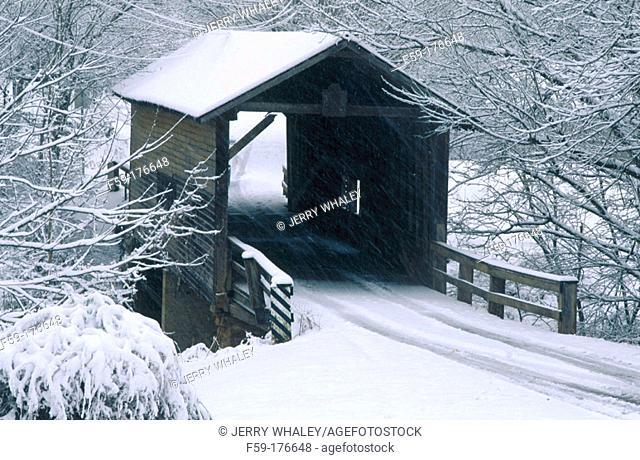 Harrisburg covered bridge. Tennesee. USA