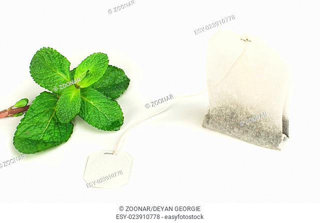 Tea bag and fresh mint