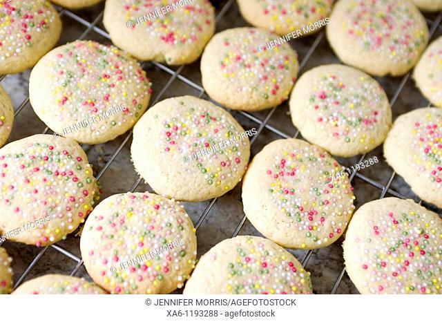 Freshly baked sugar cookies with sprinkles cooling on a rack
