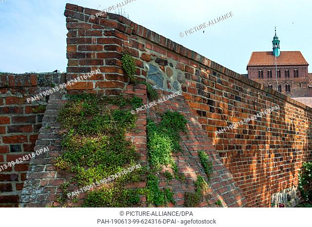 06 June 2019, Saxony-Anhalt, Hansestadt Havelberg: The cathedral Sankt Marien zu Havelberg. Uhus have settled in a niche in the west building of the church...
