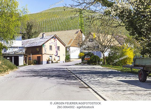 small hamlet with vineyard, district of Durbach, Germany, at the Baden Wine Route