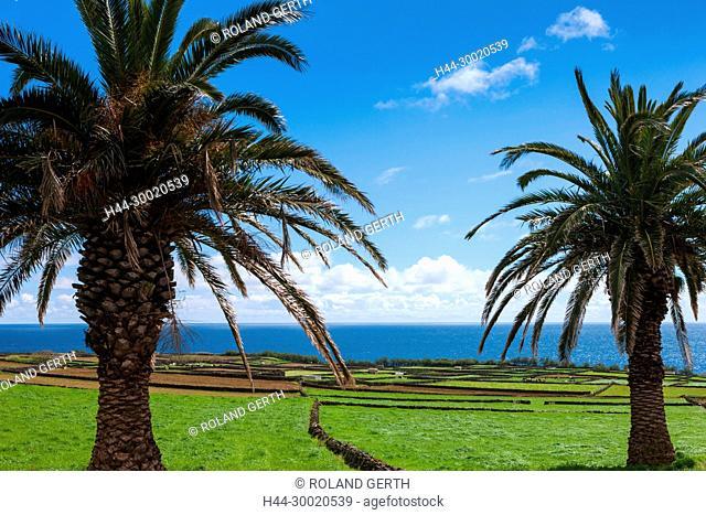 Portugal, Azoren, Terceira, Porto Martins