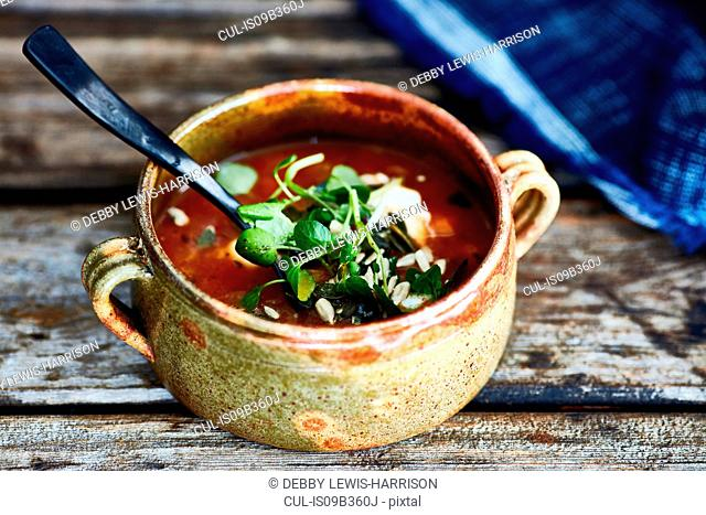 Bowl of soup garnished with watercress, on wooden table