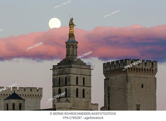 Papal palace (Palais des Papes) and cathedral Notre Dame with full moon, Avignon, France