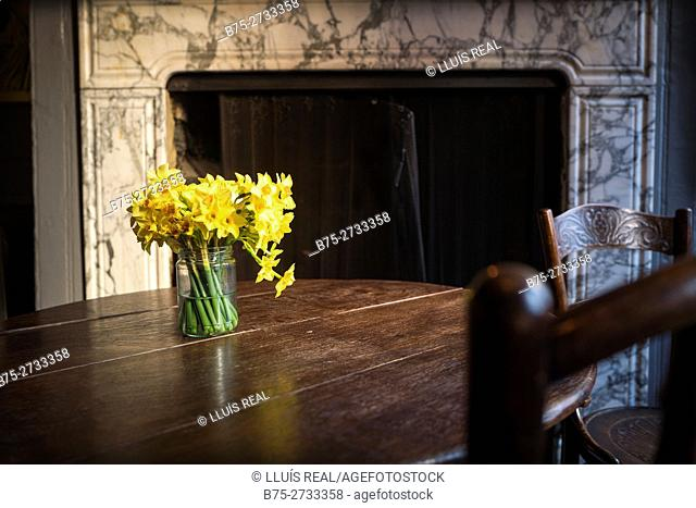 Old table and chairs, vase with yellow daffodils. Marble fireplace in background