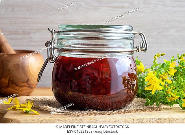 St. John's wort flowers macerating in olive oil which has turned red