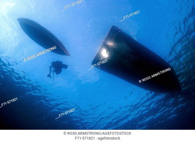 Boat, kayak and scuba diving equipment viewed from underwater. South Harbour. Poor Knights Islands. South Pacific Ocean