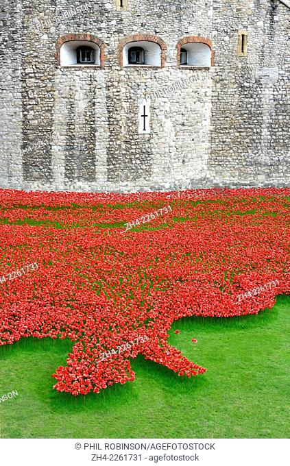 London, England, UK. 'Blood Swept Lands and Seas of Red' - Poppies in the Moat at the Tower of London. Art installation aiming to fill the space around the...