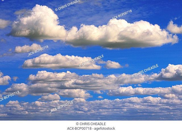 Clouds, cumulus clouds on blue sky, British Columbia, Canada